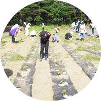 援農と交流ツアー